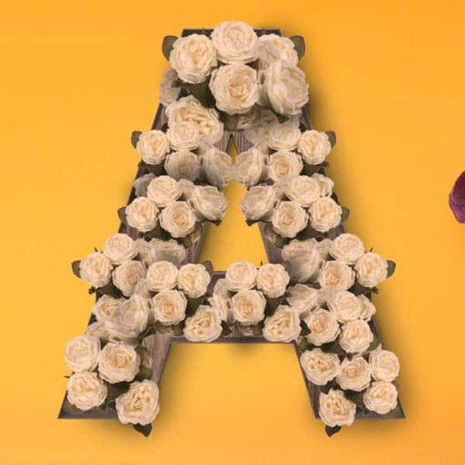 ראשי פרחים