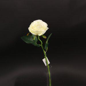"""ענף ורד פתוח ג.50 ס""""מ -קרם"""