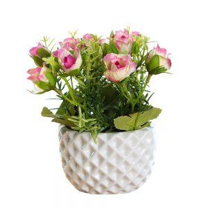 """שיח ורד מיני בעציץ קרמי ג.15 ס""""מ-ורוד"""