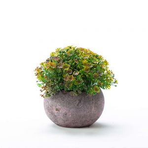 """שיח ירק פלסטי בעציץ ג.12 ס""""מ-ירוק/חום"""