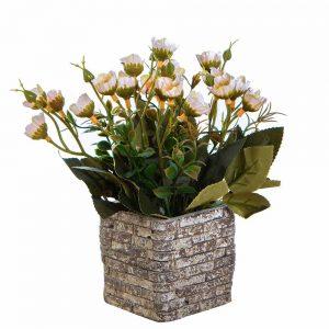 """שיח ניצני פרחים בעציץ קרמי ג.20 ס""""מ-אפרסק"""
