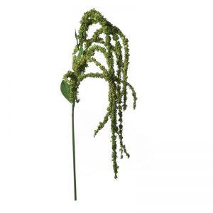 """ענף זנב שועל ג.80 ס""""מ-לבן"""