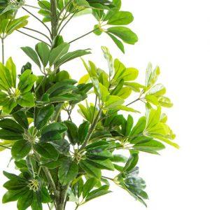 צמח מלאכותי של חברת דקל