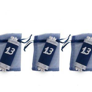 חבילת 3 שקית אורגנזה עם ספר תורה 13-כחול