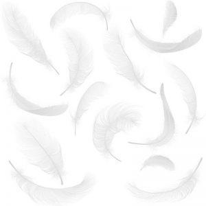 שקית נוצות בתיפזורת-לבן
