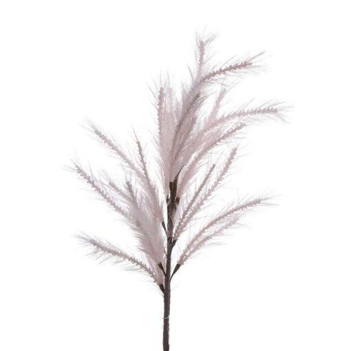 """ענף מברשות ג.120 ס""""מ-ורוד"""