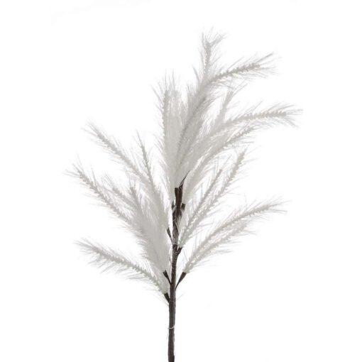"""ענף מברשות ג.120 ס""""מ-לבן"""