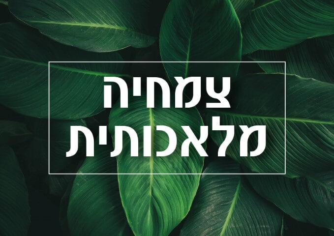 צמחים מלאכותייים